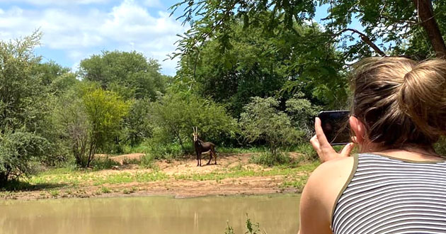 BUSHWILLOW CREEK RANCH & VENUE, HOEDSPRUIT (12km)