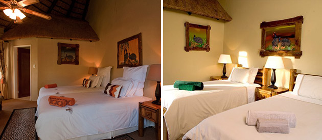 Ditholo Game Lodge - Bela Bela (Warmbaths) accommodation - Limpopo