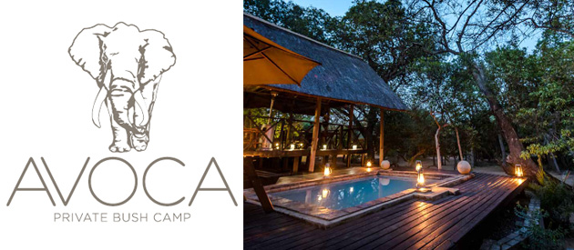AVOCA PRIVATE BUSH CAMP, HOEDSPRUIT