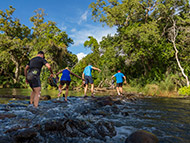 Lowveld Trail Running