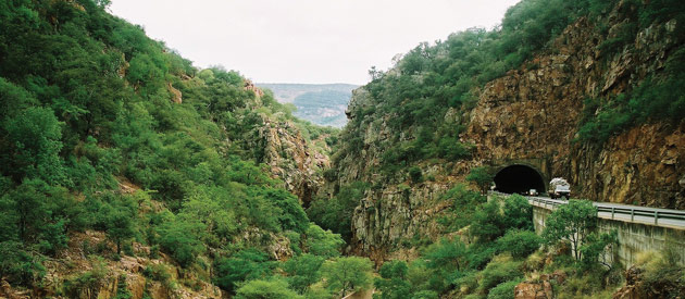 Mopani | Valley of the Olifants