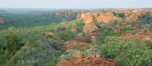 Thabazimbi, meaning 'Mountain of Iron', is situated in the Waterberg Region of the Limpopo Province in South Africa.